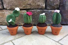 Items similar to Felt Succulents Set of Seven on Etsy Felt Succulents, Artificial Succulents, Artificial Flowers, Mini Plants, Cactus Plants, Cactus En Crochet, Flower Wall Backdrop, Decorated Jars, Painted Mason Jars