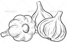 Garlic Clipart and Stock Illustrations. Garlic vector EPS illustrations and drawings available to search from thousands of royalty free clip art graphic designers. Vegetable Coloring Pages, Fruit Coloring Pages, Coloring Books, Object Drawing, Line Drawing, Vegetable Drawing, Halloween Drawings, Doodle Art, Easy Drawings