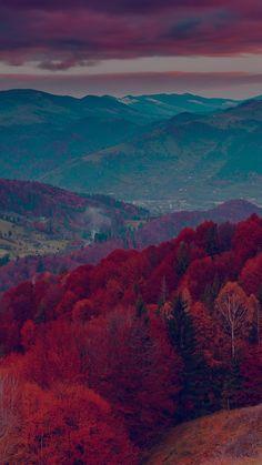 Fall Mountain Fun Red Tree Nature Dark Beautiful iPhone 6 wallpaper