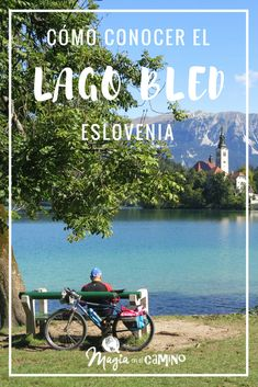 El Lago Bled, en Eslovenia, es uno de los lugares más fotogénicos del país. Hermoso para recorrerlo caminando o en bicicleta.  #Eslovenia #viajar #Europa #EuropadelEste #viajarconniños #viajarenfamilia #lago #lake #naturaleza #turismo To Go, Travel Blog, Europe, Traveling, Lakes, Places, Trips, Travel Organization, Beautiful Places