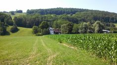 Swiss Corn Farm  #village #swiss #corn #farm #photography