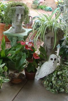 Head planters..my fave planters
