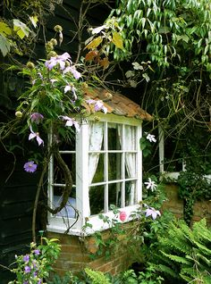 floralls: Cottage Window (by Brian Sibley)