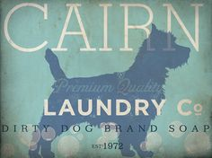 Cairn Terrier dog laundry company laundry room by geministudio