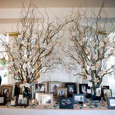 Inspired by a photo Jaimie saw on TheKnot.com, the escort cards hung from two sets of curly willow branches strung with crystals and cymbidium orchids. To personalize the display, sea glass and photos of family members decorated the table.