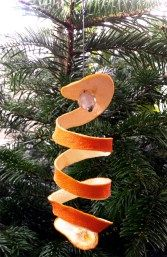 Spirale aus Orangenschale