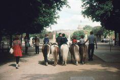 Jardin du Luxembourg  15 rue de Vaugirard  ...inspiration for your Paris vacation from Paris Deluxe Rentals