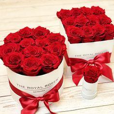 #theroyalrosesgermany #rosebox #infinityroses #beautiful #lovely #classy #alwaysright #homedecor #giftideas Flower Boxes, Raspberry, Classy, Fruit, Beautiful, Instagram, Events, Lingerie, Home Decor