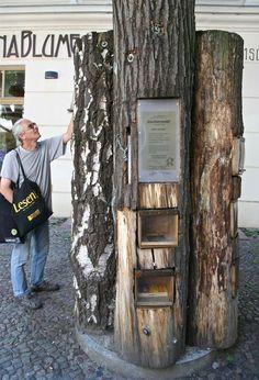 Public library, Berlin, Germany. © Miikka Järvinen Berlin Street, Urban Landscape, Berlin Germany, Street Photography, Public, Photos, Woodland Forest, Reading, Pictures