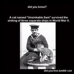 Unsinkable Sam.