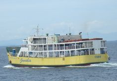 Ferry with 99 passengers ran aground in Philippines | Maritime News The passenger ferry Mika Mari V got full blackout and ran aground on 5.5 nautical miles off Ormoc City Philippines. The vessel lost propulsion power during a