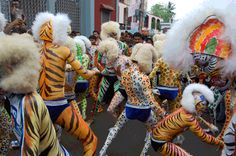 Human Tigers of Mangalore - a dance during Dussera festival by men painted as the wild animal.
