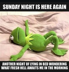 """Kermit is famous charter in cartoon movies.He is so funny character.These """"Monday Memes Kermit"""" are all about to Kermit. Just read out these """"Monday Memes Kermit"""" . Humour Yoga, Gym Humor, Memes Humor, Gym Memes, Life Memes, Yoga Meme, Funny Yoga, Yoga Puns, Workout Memes"""