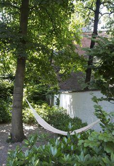 In een stadstuin, waar gras niet goed gedijt, is fris grind vaak een betere optie. Hier in Antwerpen eindigt de tuin in een jong wintergroen bos, waardoor ...