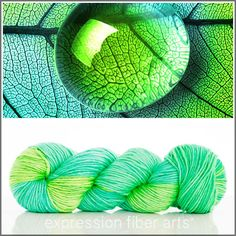 $30 - LEAF - shimmering worsted weight pearlescent merino silk yarn from Expression Fiber Arts. Oh la la!