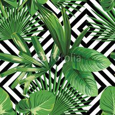 Wall mural tropical palm leaves pattern, geometric - nature • PIXERSIZE.com