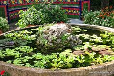 Menton - Jardin Fontana Rosa #visitcotedazur