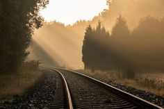 Track of the railway line from Dortmund to Enschede (Netherlands) in autumn in the hamlet Börnste Kirchspiel Dülmen North Rhine-Westphalia Germany