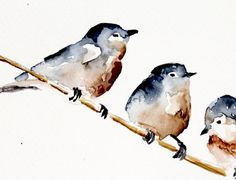 Grey and red Birds . Original watercolor Birds . by EmelArt by Gloveshop
