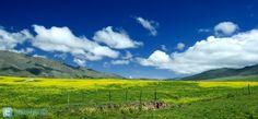 Tafi del Valle , Tucuman , Argentina @Nico D'Alo © Vineyard, Landscapes, Mountains, Country, Amazing, Nature, Travel, Outdoor, Landscape Photos