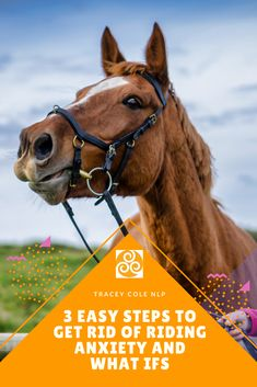 Although anxiety is a very natural and necessary emotion, it's not useful when it's stopping our enjoyment of riding.  Many riders are plagued with anxiety, nerves, doubts and what ifs. So what if you could remove them? Find out how here. How To Remove, How To Get, Confident, Rid, Anxiety, Horses, Natural, Easy, Horse