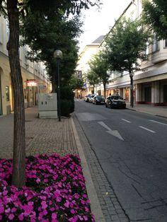 Klagenfurt am Wörthersee in Kärnten Klagenfurt, 40 Years, Favorite Holiday, Austria, Sidewalk, Walkways, Pavement