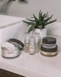 My favorite Colleen Rothschild products! Extreme Recovery Eye Cream Age Renewal Super Serum Radiant Cleansing Balm Glycolic Acid Peel Pads with Blue Agave #LTKbeauty #LTKunder50 #LTKunder100 Acid Peel, Bombshell Beauty, Glycolic Acid, All Things Beauty, Eye Cream, Serum, Recovery, The Balm, Age