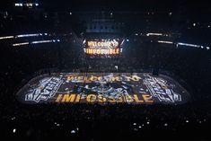 Golden Knights Hockey, Vegas Golden Knights, Las Vegas Photos, St Louis Blues, Nhl, Penguins, Biscuit, Basket, Live