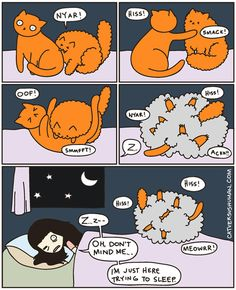 Artist Documents Her Experiences With Her Cats Through Comics - World's largest collection of cat memes and other animals Cute Cats, Funny Cats, Funny Animals, Cute Animals, Crazy Cat Lady, Crazy Cats, Cat Vs Human, Human Human, Catsu The Cat