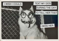 I wish I could text my dog during the day to tell her that I miss her. #postsecret