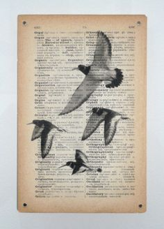Ornithomancy  inkjet print on found dictionary page, Rowena Hughes