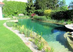 Best Garden Decorations Tips and Tricks You Need to Know - Modern Natural Swimming Ponds, Natural Pond, Swimming Pools Backyard, Small Yard Landscaping, Small Backyard Pools, Pond Design, Landscape Design, Diy Pool, Pool Houses