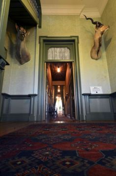 Exploring the ghost house Ghost House, New Hospital, Pretoria, Front Entrances, Smoking Room, Drawing Room, Victorian Fashion, Castle, Explore