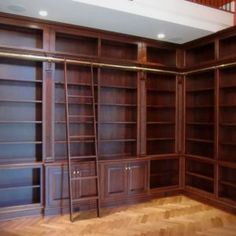 Library Shelf With Ladder