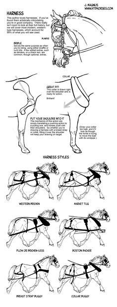 How to draw tack Harness by sketcherjak.deviantart.com on @deviantART