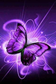 Purple Art, Purple Love, All Things Purple, Shades Of Purple, Purple Stuff, Butterfly Drawing, Butterfly Flowers, Beautiful Butterflies, Purple Flowers