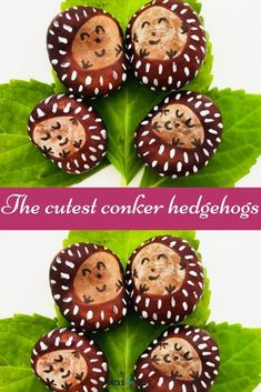 How adorable are these little conker hedgehog babies? We just love them. Collect conkers on a family walk and then spend a happy afternoon crafting to make them into these adorable little conker hedgehogs. A perfect craft for kids. #conkercraft #conkercraftforkids #autumncraftforkids #fallcraftsforkids #conkers