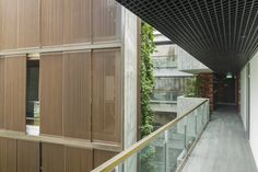 Gallery - Killiney Road / ipli architects - 11