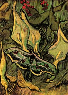 Great Peacock Moth - Vincent van Gogh - Painted in May 1889 while in the Saint-Rémy Asylum. Current location: Van Gogh Museum, Amsterdam, Netherlands ................#GT