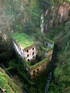33 Most beautiful Abandoned places... Abandoned mill from 1866 in Sorrento, Italy