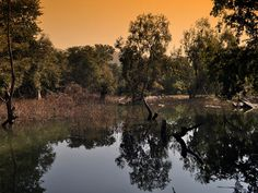 Sita Mata Wildlife Sanctuary - in Rajasthan, India