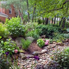 6 Steps to Make a Rain Garden: Rain gardens filter runoff and protect groundwater especially after big rains. They also add unexpected beauty to low spots that tend to collect water and draw wildlife. Here& how to make a rain garden in your own landscape. Landscape Plans, Landscape Design, Landscape Rocks, Rain Garden Design, Rock Flower Beds, Jardin Decor, Backyard Landscaping, Landscaping Ideas, Dry Riverbed Landscaping