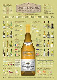 1804 White Wine Infographic Poster on Behance Types Of White Wine, Types Of Wine, Wine Temperature, Wine Infographic, Infographics, Wine Chart, Wine Folly, Wine Education, Wine Guide