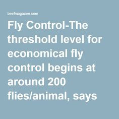Fly Control-The threshold level for economical fly control begins at around 200 flies/animal, says Eldon Cole, University of Missouri Extension livestock specialist. He points out research indicates bloodsucking horn flies alone can cost 25 lbs. of gain in stocker cattle. Fly Control, Hobby Farms, Livestock, Cattle, Missouri, Horn, Homestead, Ranch, University