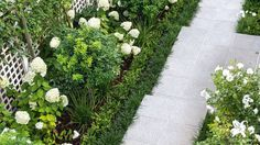 This barren wasteland has been transformed into a tiered, family-friendly place to play. Small Courtyard Gardens, Small Courtyards, Back Gardens, Small Gardens, Garden Inspiration, Garden Ideas, Patio Ideas, Backyard Garden Design, Backyard Patio