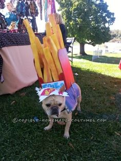 Cool Dog Costume: Frenchie Fry Fashion by Yogi... Coolest Halloween Costume Contest