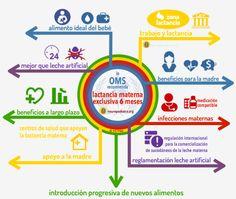 Recomendaciones de la OMS sobre lactancia materna (Dra. Mª José Más)