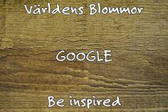 Världens Blommor Google Bli inspirerad