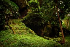 I want to travel here: Ancient burial caves of the Zuiganji Temple in Matsushima. Miyagi-ken, Japan.