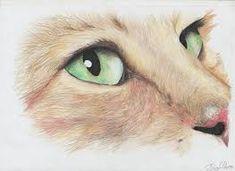 Resultado de imagen de dibujos a lapiz de animales